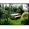 MA0030 Doğal Ahşap Bahçe Masası
